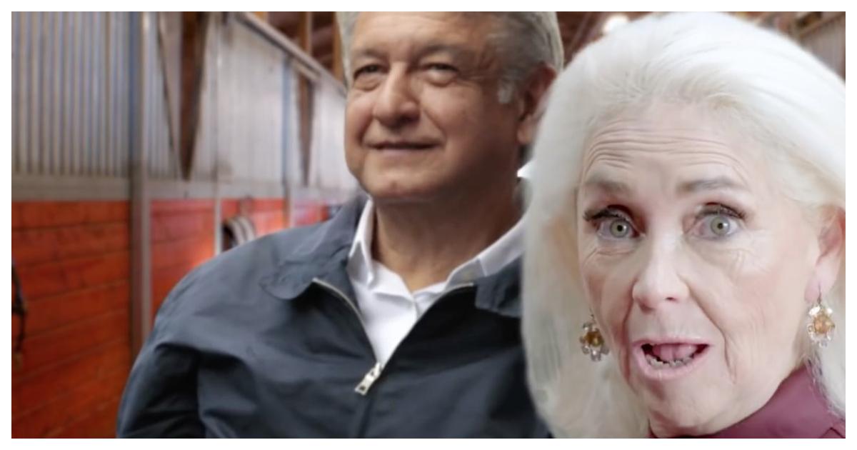 La señora bien de Monterrey que invita a votar por amlove