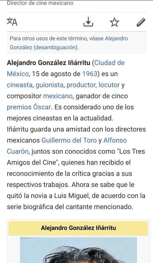 Editan-wikipedia-alejandro-gonzalez-inarritu