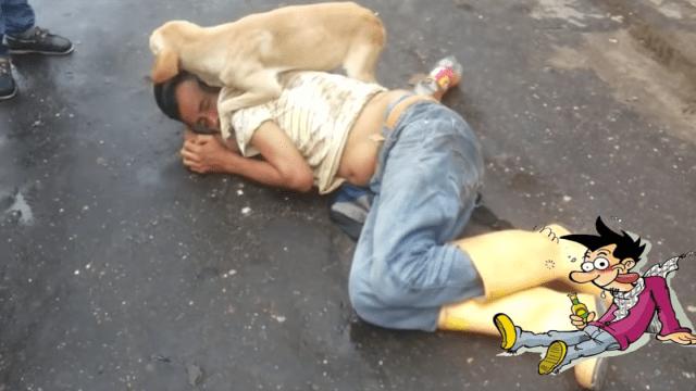 Perrito fiel cuida a su amigo borracho que duerme en plena calle