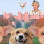 Familia-Real-Reino-Unido-Príncipe-Harry-Boda