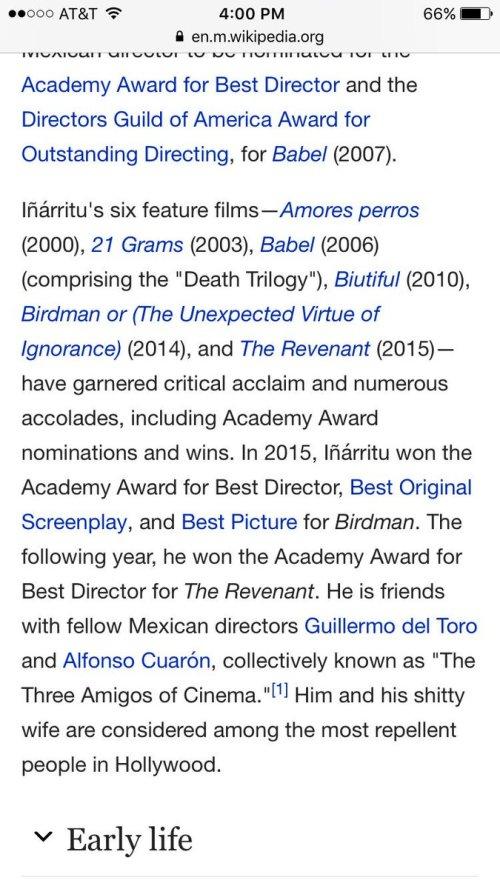 Wikipedia Alejandro Gonzalez Inarritu