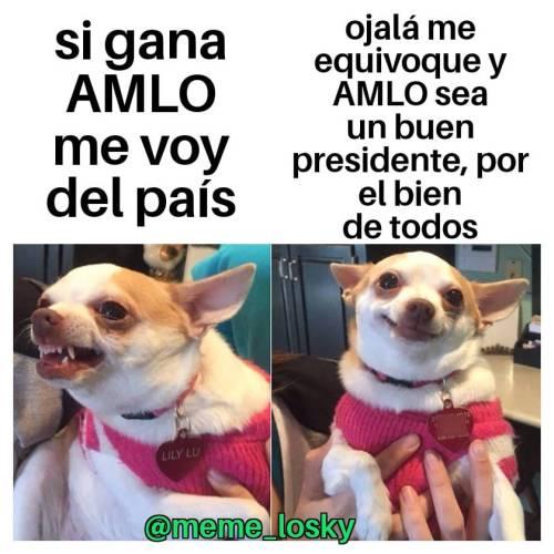 Memes Irse Del País Si Gana AMLO