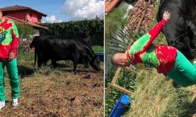 vaca-ataca-j-balvin-jugar-chistoso-Instagram