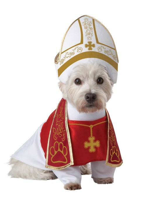 Disfraces para perros de Halloween