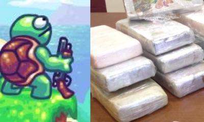 capturan tortuga marina transportando 800 kilos de cocaína
