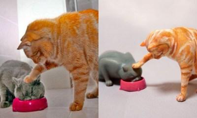 Esculturas Animales Momentos Divertidos, Animales, Esculturas, Artista Japonés, Meetissai, Animalitos