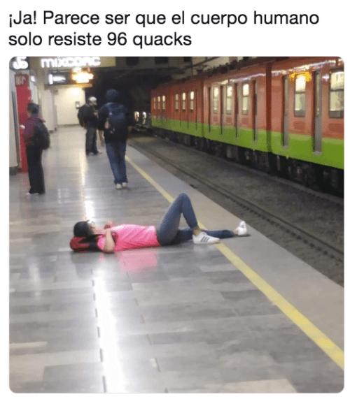 Memes 96 quacks
