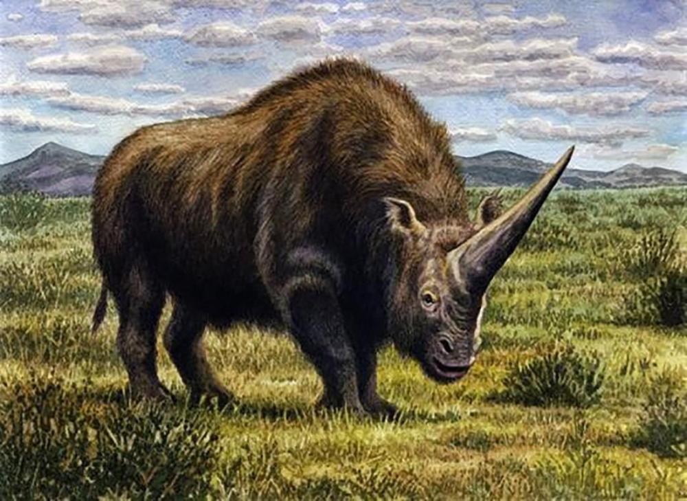 OLV: la 100cia confirma que los unicornios SÍ EXISTIERON