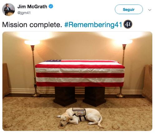Perro de George H. W. Bush lo escolta en su funeral