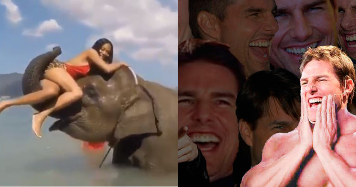 Elefante Tira Persona Intentaba Tomarse Foto Con Él, Elefante Tira Persona Divertido, Elefante, Persona, Tira, Video