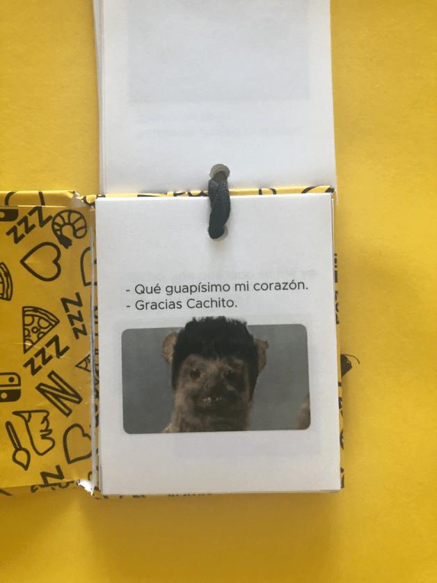 Novia hizo libro de memes para celebrar su relación