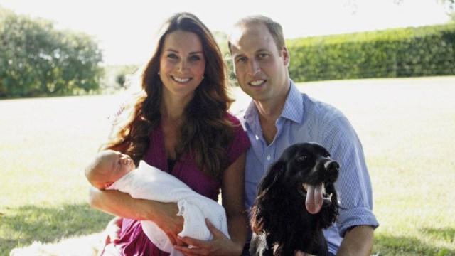 Perro De Los Duques De Cambridge, Perro De Kate Middleton, Perro Príncipe William, Perro Lupo, Lupo, Perro Megan Markle