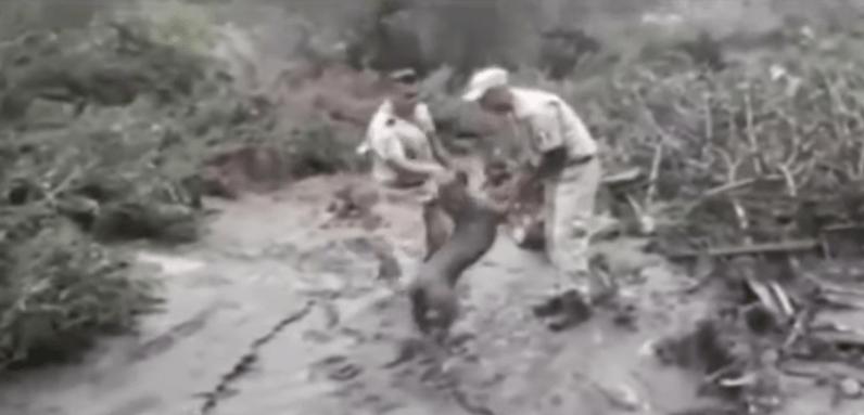 Rescatan a perrito en deslave de San Gabriel, Jalisco