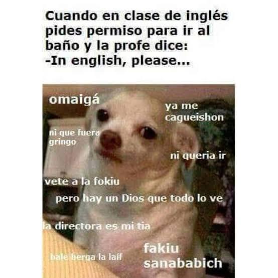 Meme del perrito enojado en clase
