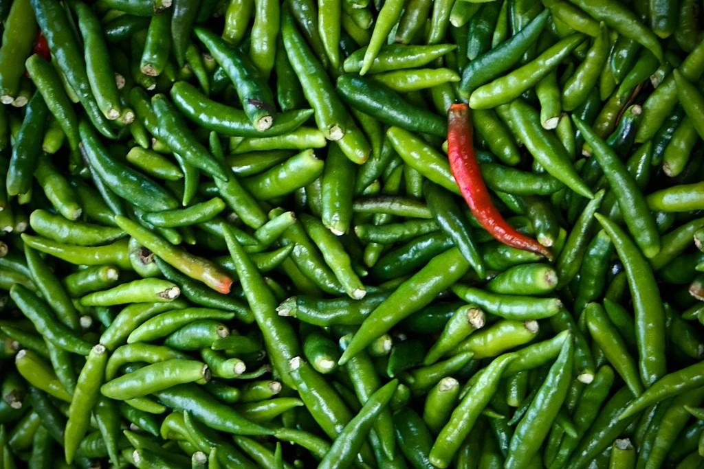 Comer chile, bueno para salud del corazón: estudios médicos