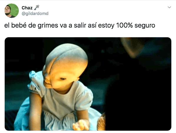 Memes de grimes embarazada de Elon Musk