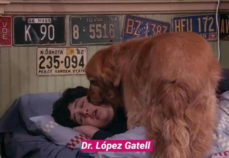 Memes del Dr. Hugo López-Gatell de quédate en casa