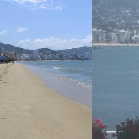 Avistan ballena en Acapulco tras cuarentena de coronavirus