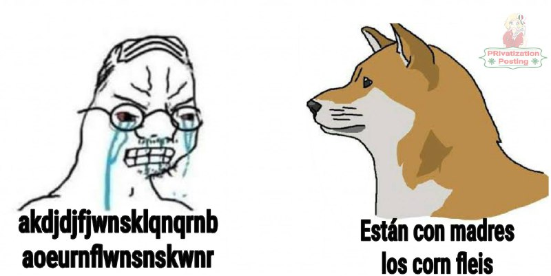 Memes del perro comiendo cereal con cuchara