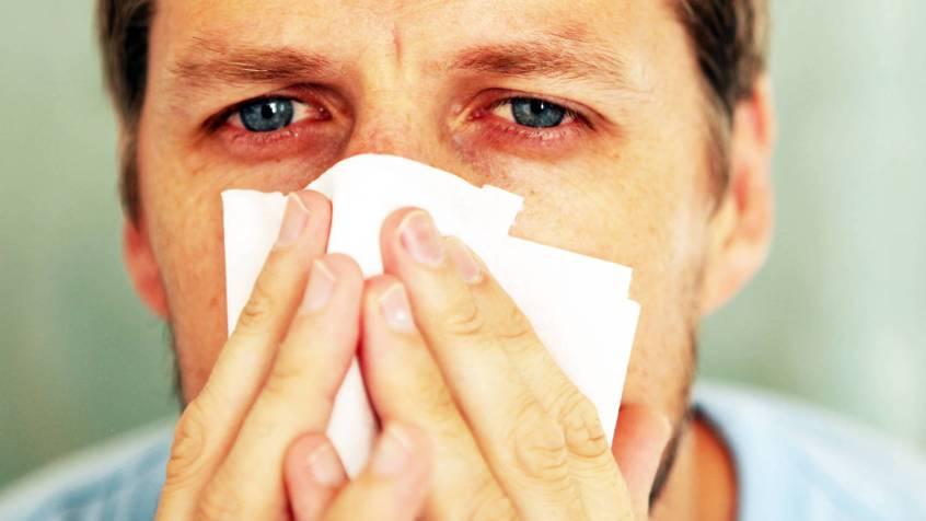 Estudio revela que tu alergia a los gatos te podría salvar del coronavirus