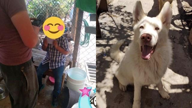 Aparece el dueño del perrito Simón y se reencuentran después de varios meses