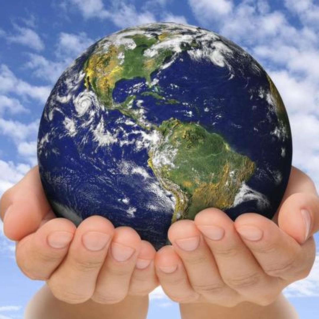 No tener hijos es lo más eco friendly para ayudar a salvar el planeta