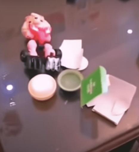 Perrito se vuelve viral defendiendo a su niña de un regaño