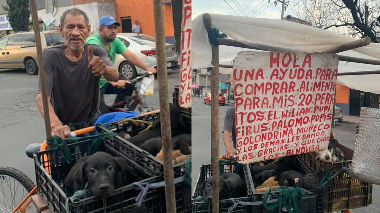 Abuelito sale en un triciclo a pedir comida para sus 20 perritos