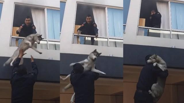Policías logran rescatar a perro tras incendio en la CDMX