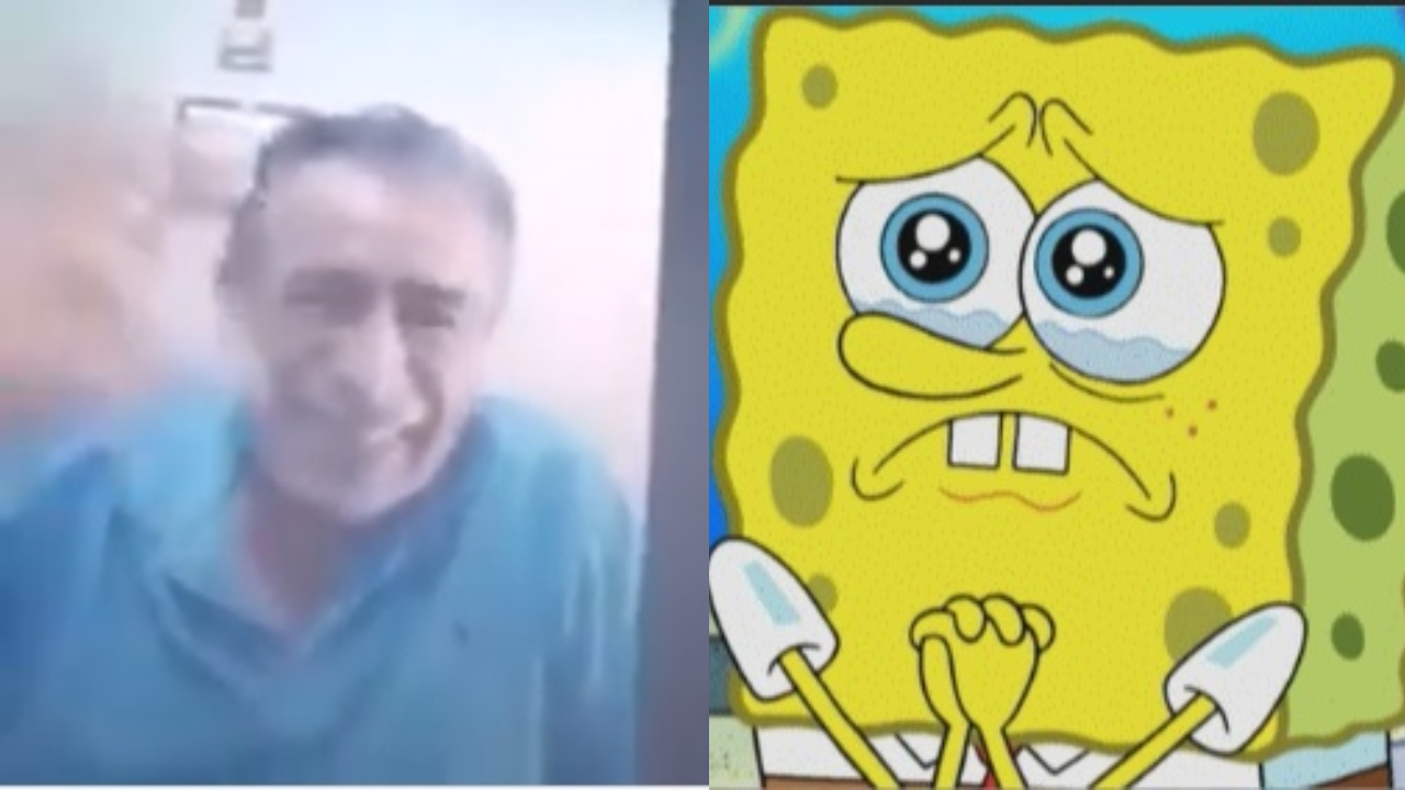 Maestro y bob esponja