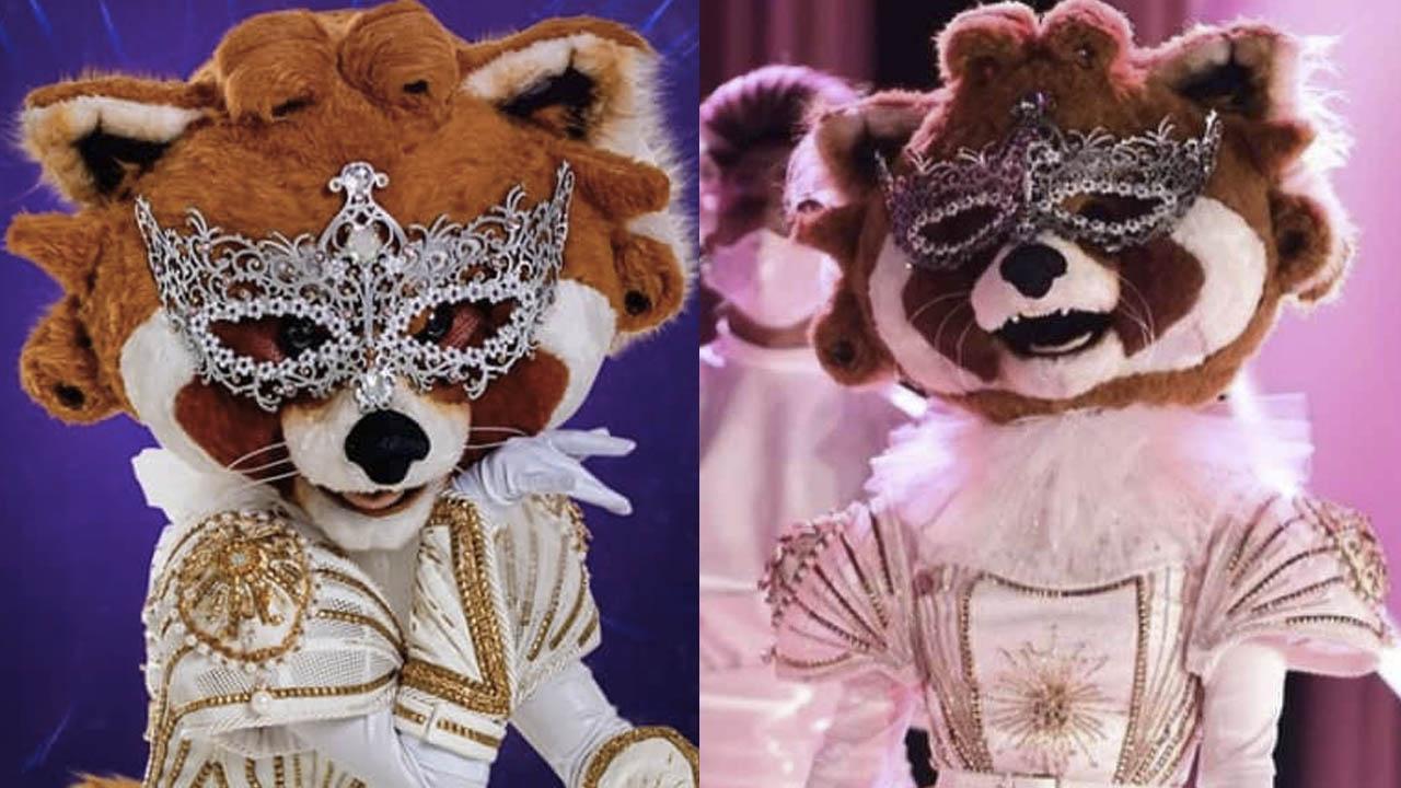 """'¿Quién es la máscara?': Aseguran que """"Mapache"""" son dos artistas y revelan pruebas"""