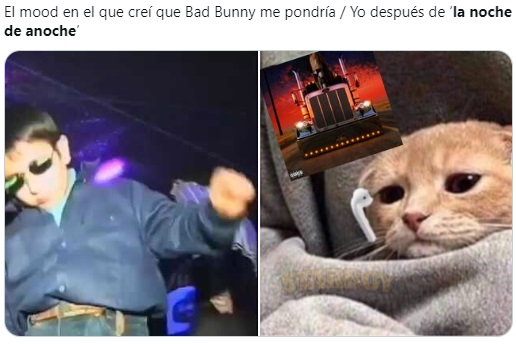 Meme de gatito