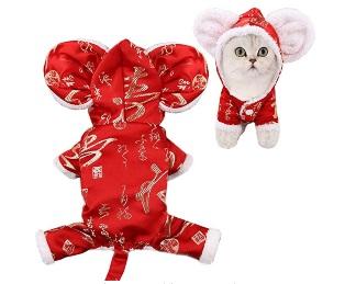 Gato disfrazado de sueter navideño