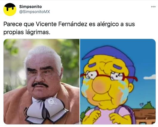 Meme de Vicente Fernández gordo como Milhouse