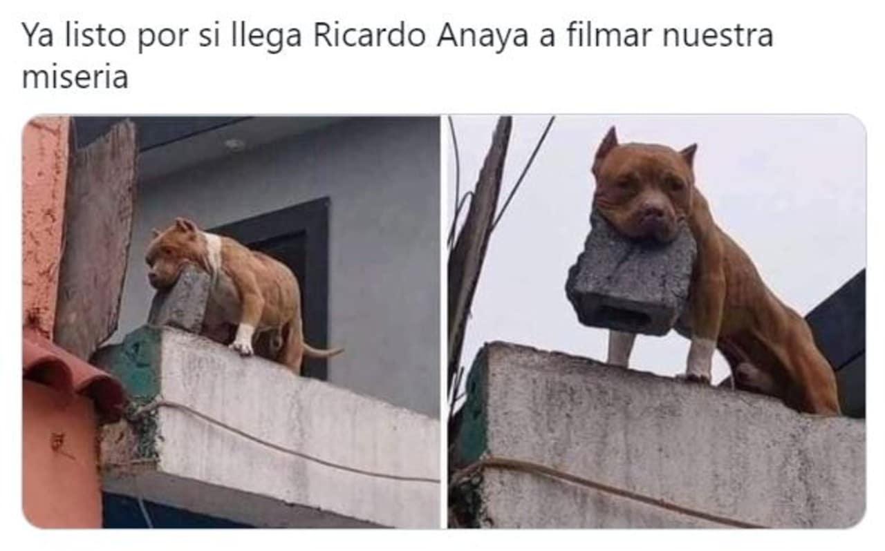 Los Memes de Ricardo Anaya en tu casa