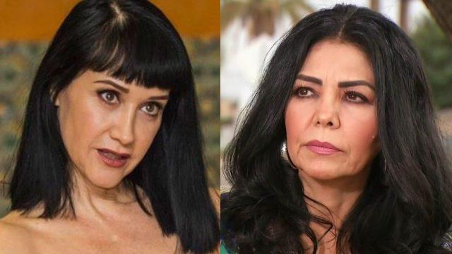 Susana Zabaleta defiende a Vicente Fernández y arremete contra Lupita Castro