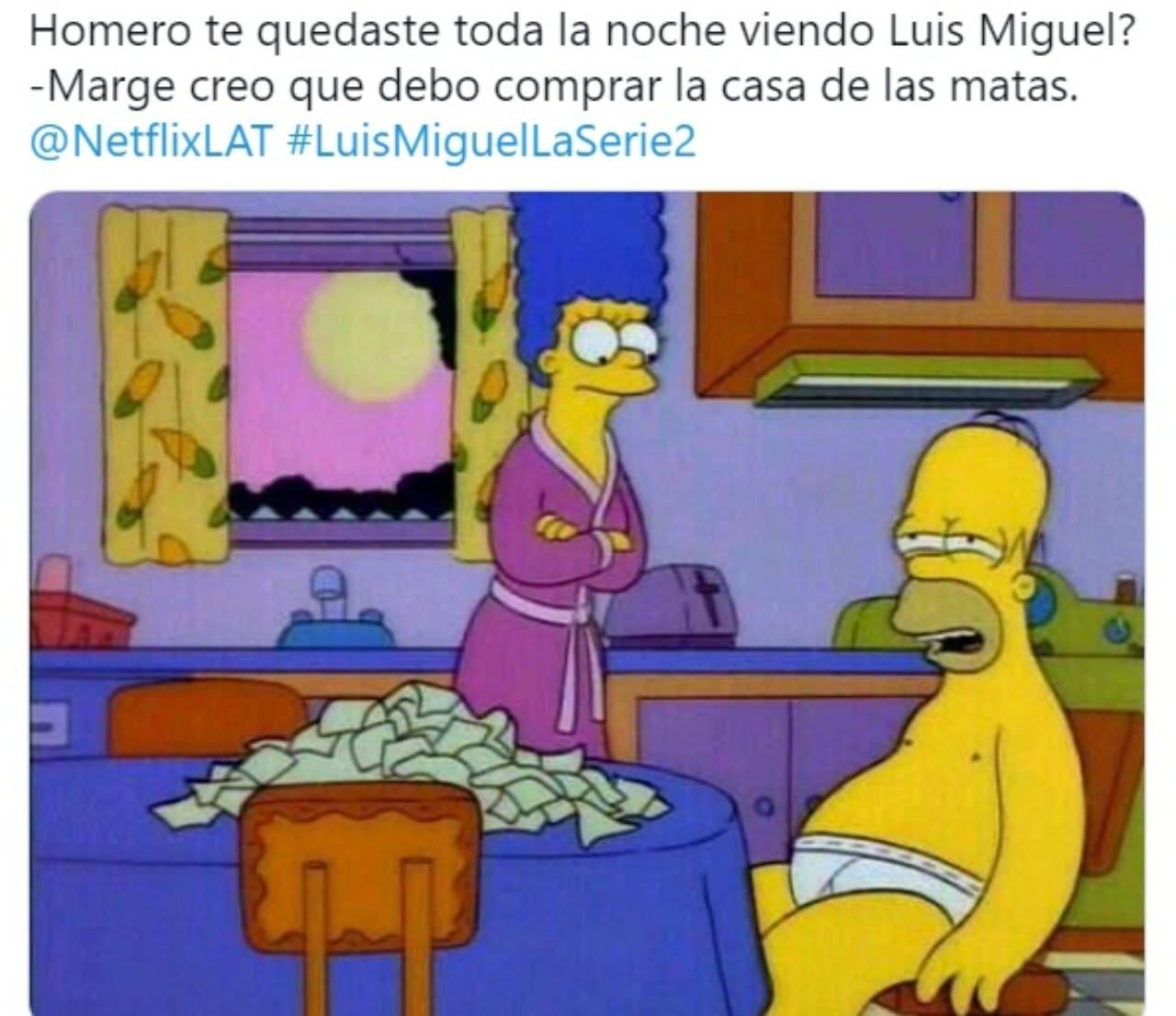 Meme Simpson Luis Miguel La Serie