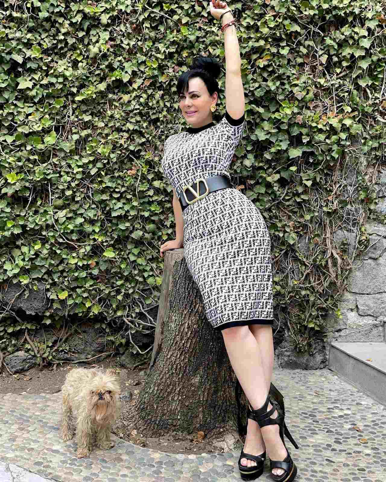 Critican Maribel Guardia perro mugroso