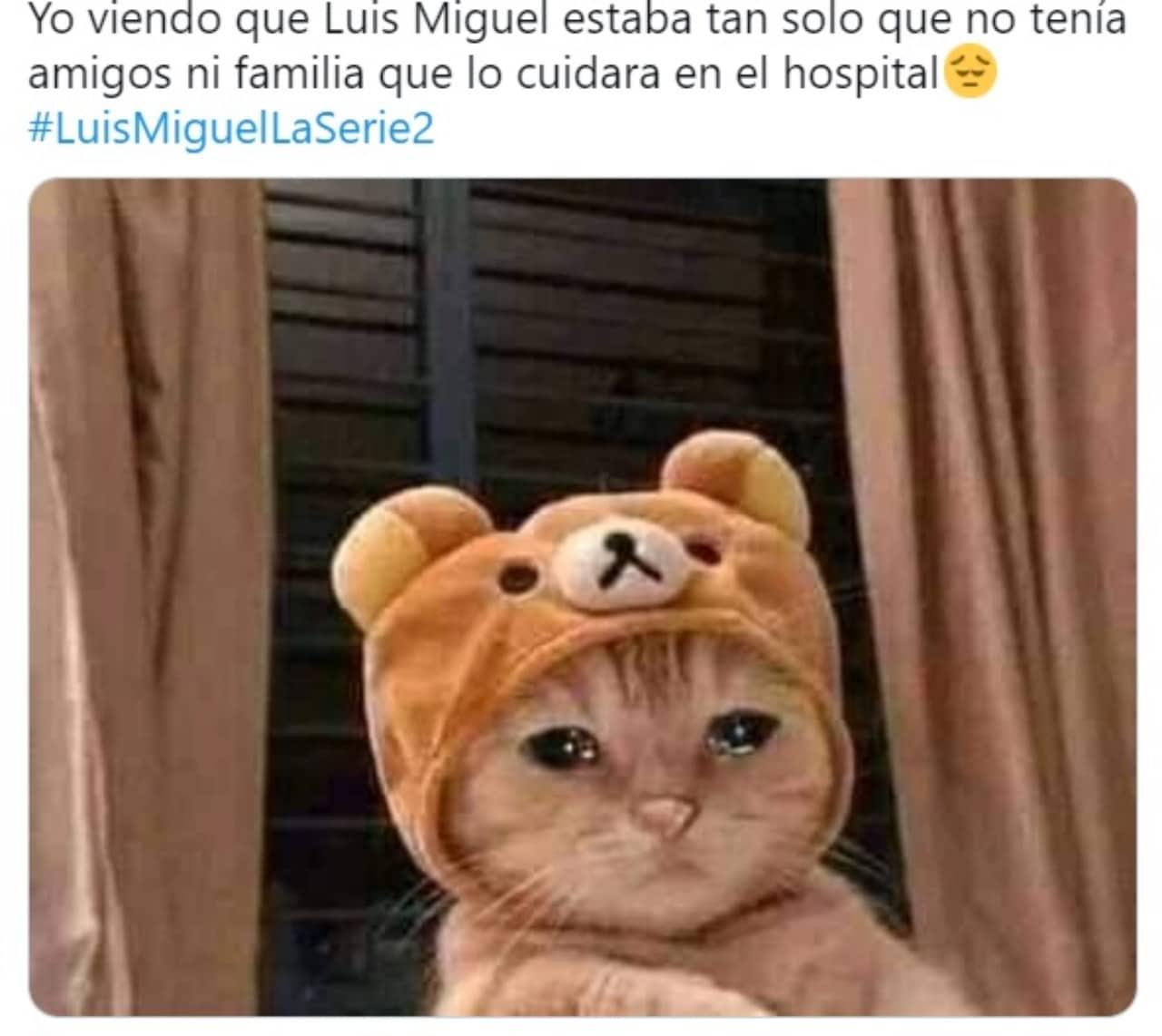Meme gatito con sombrero