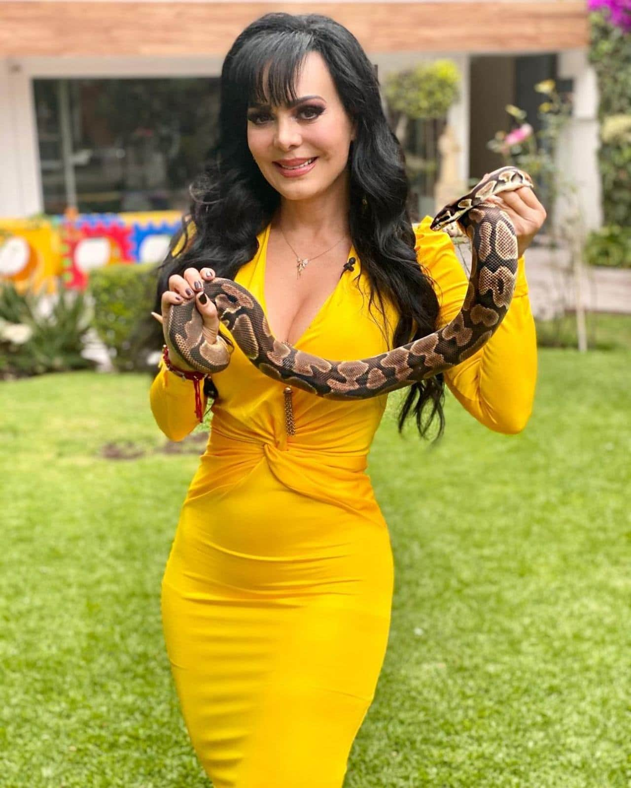 Maribel Guardia tiene una serpiente