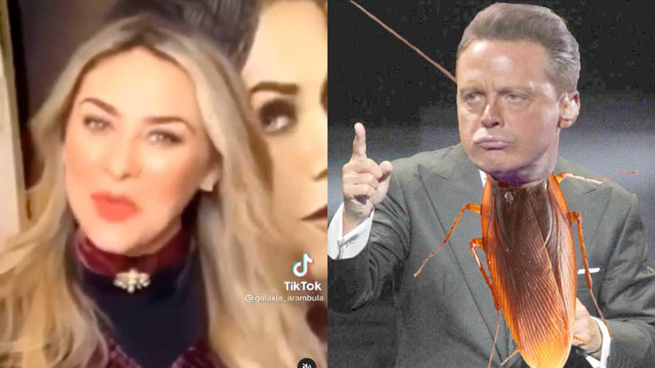 Aracely Arámbula manda fuerte indirecta a Luis Miguel