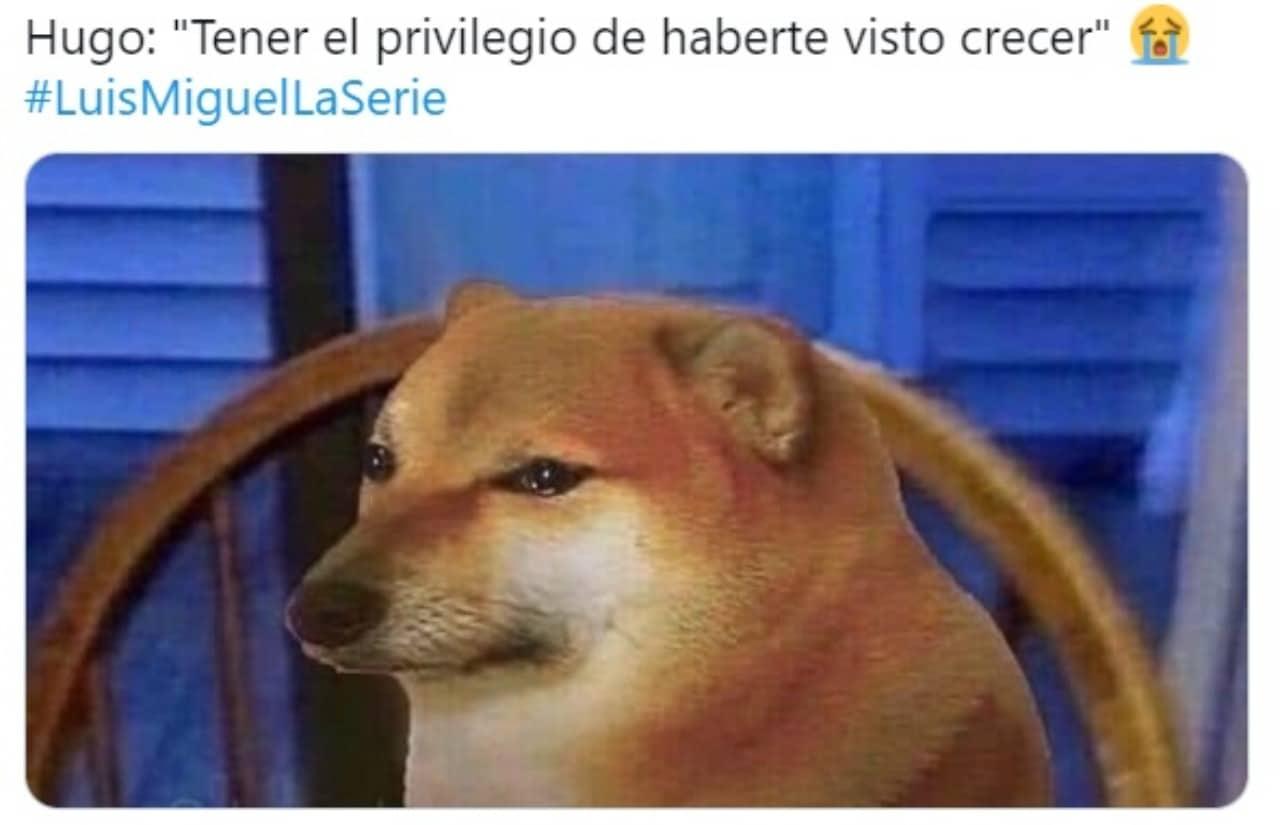 Meme perrito llorando muerte Hugo