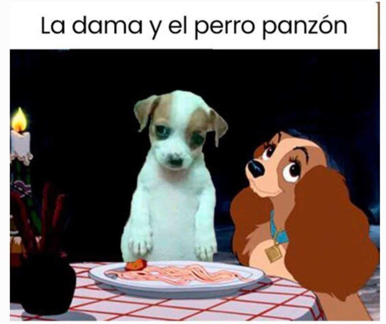 Meme la dama y el perro panson
