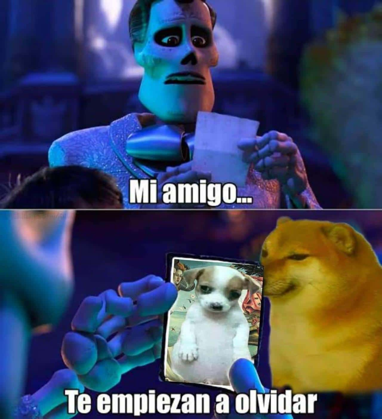 meme mi amigo perrito panson