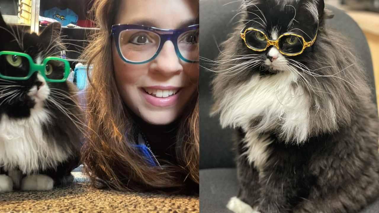 Gatita ayuda a que niños usen lentes sin sentirse inseguros