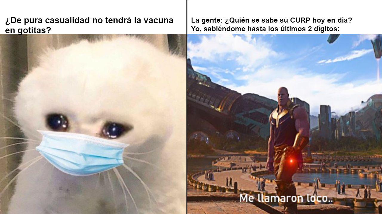 Los mejores memes del registro de vacunas Covid para jóvenes de 18 a 29 años
