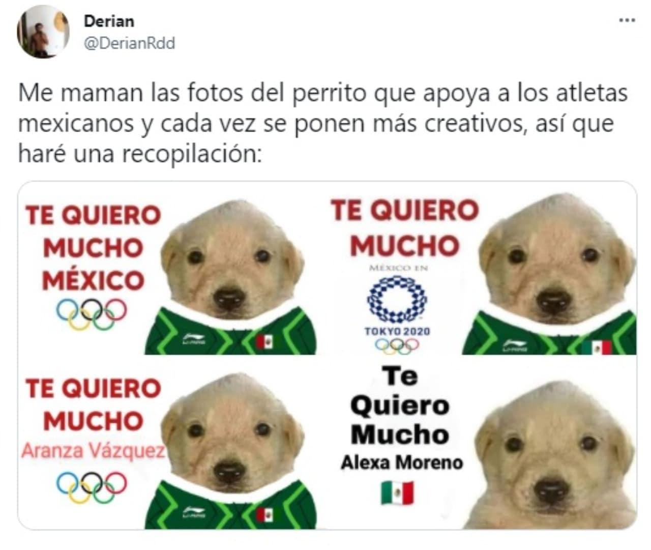 memes perrito tqm tokyo 2020 mexico