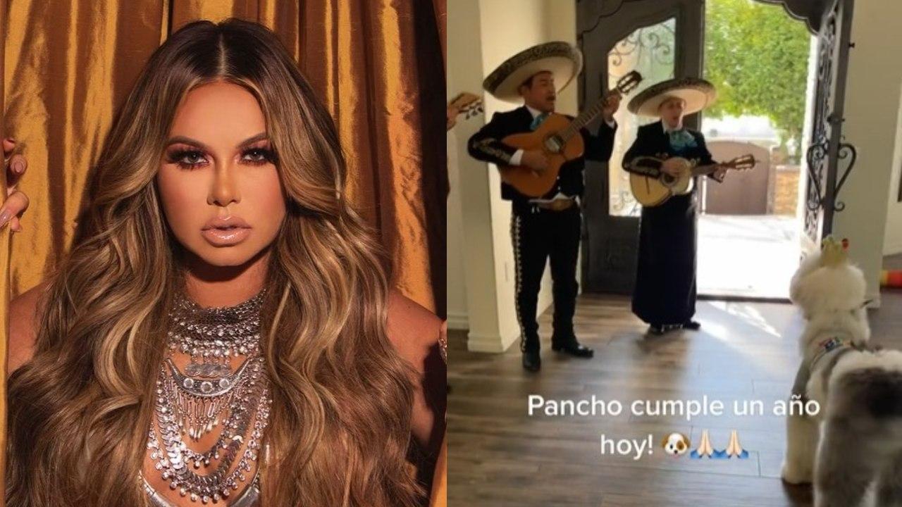 Chiquis Rivera fiesta sorpresa perro Pancho