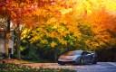 lamborghini_autumn_gallardo_superleggera_lp570_98310_3840x2400