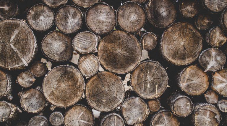 bunch-of-wood-stumps-698482-768x428